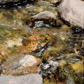 027-Water-Over-Rocks