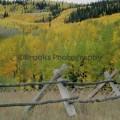 048-Fall-Fence