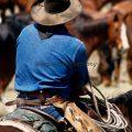 095-Cowboy Blue