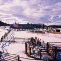 099-Winter Ranch